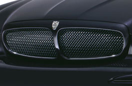 Upper Mesh Grille - Black Finish - C2S36461 - Genuine Jaguar