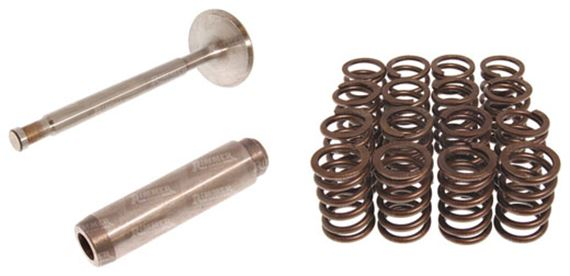 Discovery 2 V8 Valves, Guides and Springs