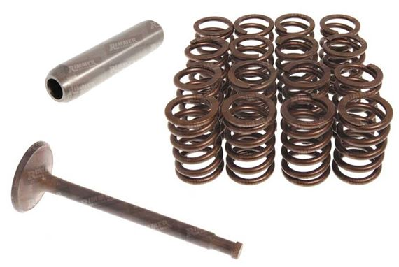 Range Rover Classic V8 Valves, Guides and Springs