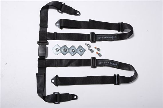 Exmoor Trim - Series 2 and 3 - 4 Point Full Harness