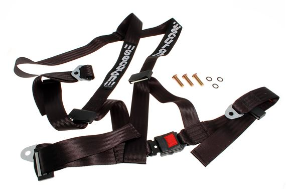 Securon 3-Point Safety Harness