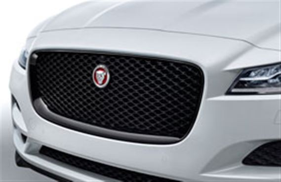F-Pace Grille - Gloss Black - Camera - T4A6210 - Genuine Jaguar