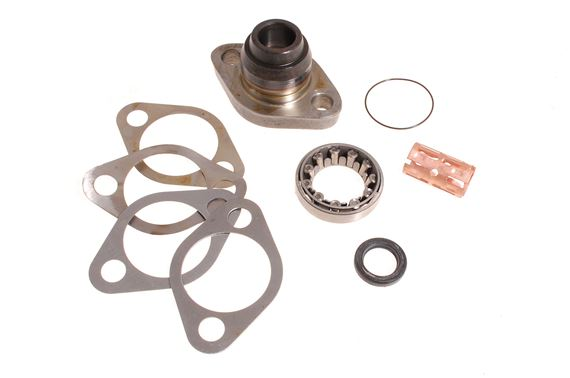 Swivel Pin Kit Upper - TAR100050P - Aftermarket