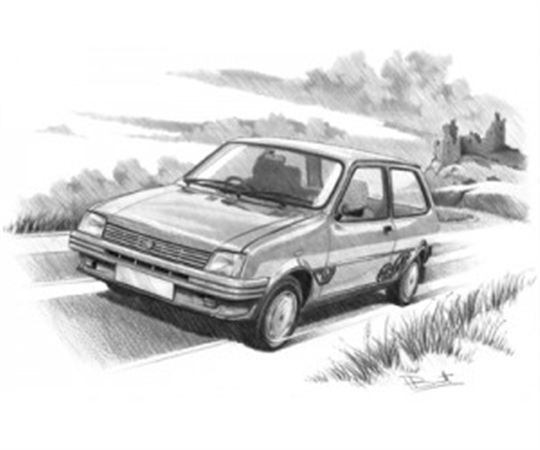 MG Metro (Light Shading) Personalised Portrait in Black & White - RP1632BW
