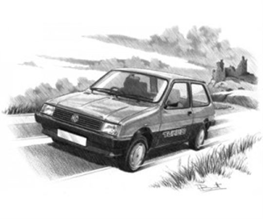 MG Metro Turbo Personalised Portrait in Black & White - RP1633BW