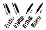 Shock Absorber and Spring Kit - RA1129P - Aftermarket
