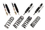 Shock Absorber and Spring Kit - RA1133P - Aftermarket