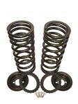 Coil Spring Conversion Kit Rear - RD1206BP - Britpart