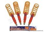 Shock Absorber and Spring Kit - LL1488RBPCEL125zz4 - Cellular Dynamic
