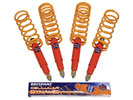 Shock Absorber and Spring Kit - LL1488BPCEL - Cellular Dynamic
