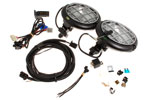 Freelander Safari 3000 Fog Lamp Kit - TD4 LHD - Genuine Land Rover