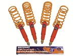 Shock Absorber and Spring Kit - LL1488RBPCEL25zz4 - Cellular Dynamic